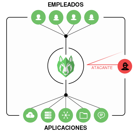 WOLF-RAY acts as a shield protecting your organisation from attacks
